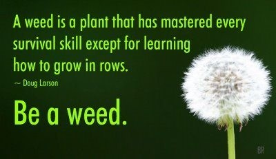 Be like the weeds.