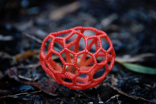 fyeahchemistry:  tiny-forest:  Red cage fungus mushroom blog   ED: Looks like a buckyball!