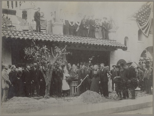 "todaysdocument:  Happy Arbor Day!  President Theodore Roosevelt replanting a Bahia tree originally planted in 1874 in Riverside, California., ca. 1904  Another product of yesterday's Take your Child to Work Day at the National Archives, our 8-year-old junior curator has this to say for his choice:  ""I just thought it looked cool because of Teddy Roosevelt and all the people.""  What kind of tree would you like to plant today?"