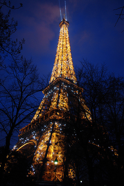 City of light on Flickr. I have been to up in the Eiffel Tower twice, both times it was too foggy and gray to take proper photos. At least this time I came away with a shot from the ground of the tower lit up. So twinkly!