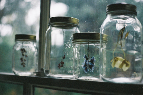 Cloudy day windowsill jars Untitled by Holly Kerchner O, MY MY!
