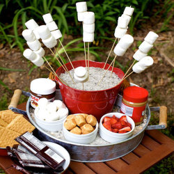 Need an outdoor party idea? S'mores Bar!!!