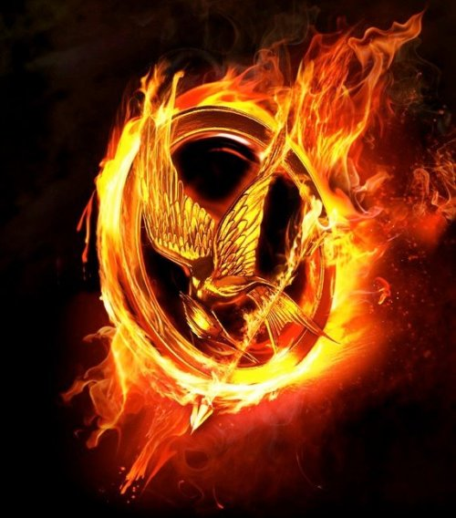 connieacelewis:  I love you HUNGER GAMES