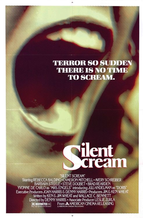 One sheet for Silent Scream (1980)