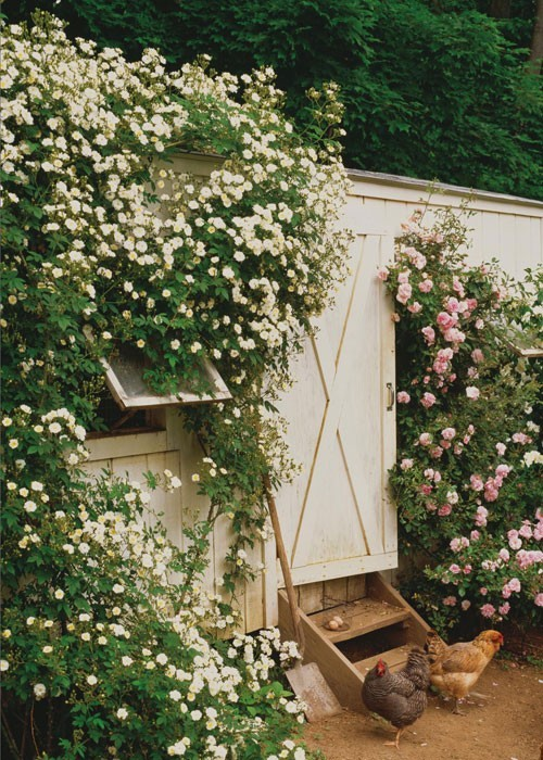 squaremeal:  (via F A R M / (the garden shed))