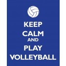 whatvolleyballplayerssay:  i reallly need this shirt who else thinks so? <3