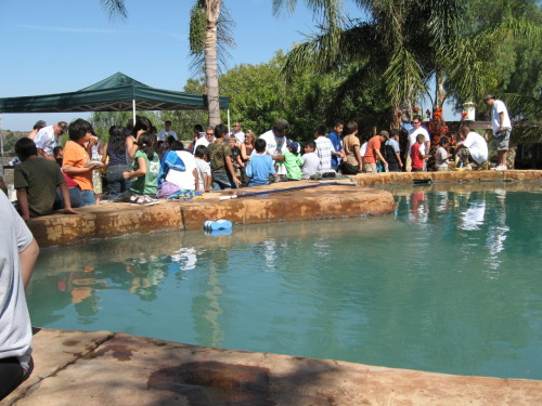 BBQ AND SWIM ~ A HUGE THANKS TO ALL OF OUR SPONSERS!!! Fontana Ranch Ranch Resources Artist Tribe.com The Glickman Family Monty's Steak House Omerta, Inc Jim Watson Insurance Hutchison Excavation My Muse .com The Mint LA Topanga Spirit