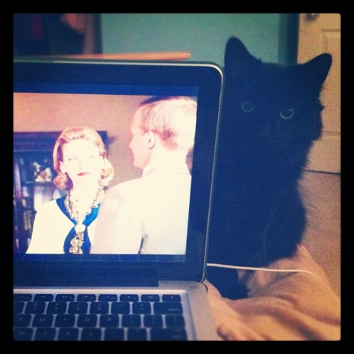 My creepy kitty gets curious about what I do. (Taken with instagram)