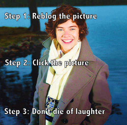 harry-styles-ultimate-fan-blog:  banging-nialler:  1-d-memes:  0nedirectionn:  I LOVE WHOEVER MADE THIS.   OMG. crying though.  oh my fuck hahahaha  WHAT IS AIR!! I just added that to my favorites. the end.