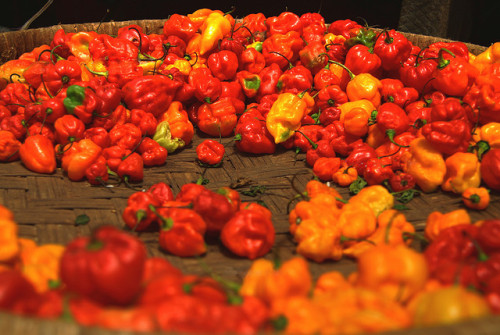 ocameroun:  Peppers by AdamCohn on Flickr.
