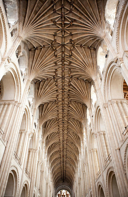 travelingcolors:  Nave Vault, Norwich | England (by Art History Images (Holly Hayes)