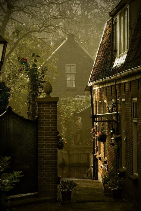 Dusk, Loenen,The Netherlands  photo via ohwhataworld
