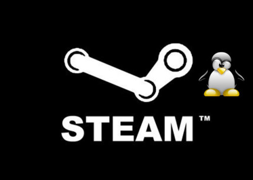 Steam for Linux!