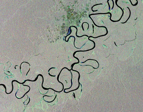 dontrblgme:  Earth from Space: Rainforest river by europeanspaceagency on Flickr.