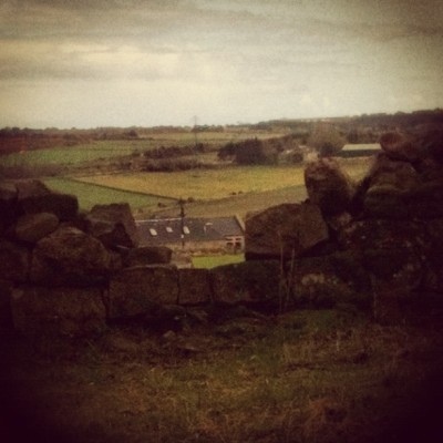 House beyond #house #field #scotland #wall #stones #sky #wood #trees #forest #wildlife #nature #clouds  (Taken with instagram)