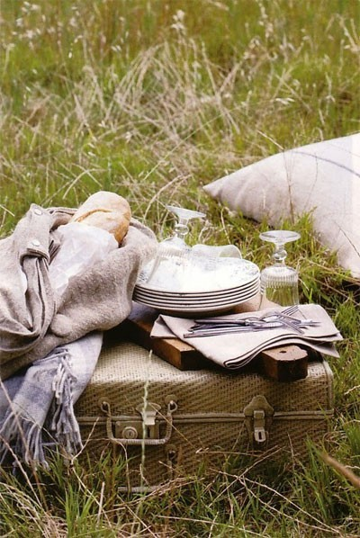 picnic in a field