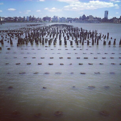 The Hudson (Taken with instagram)