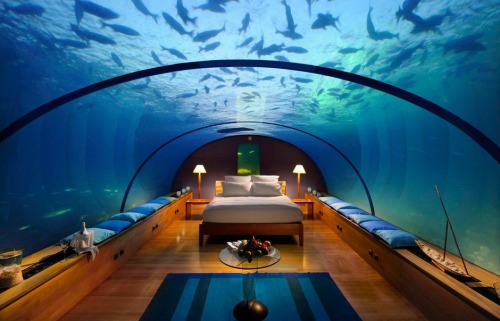 ninbra:  Underwater bedroom.  Simply….Yeah…You get it..lol
