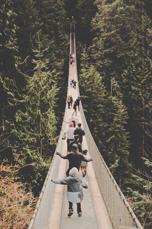 man-and-camera:  Cap Suspension Bridge