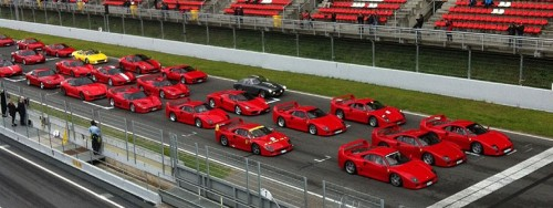7 x Ferrari F40 leading another 63 Italian stallions (via Italian Car News)