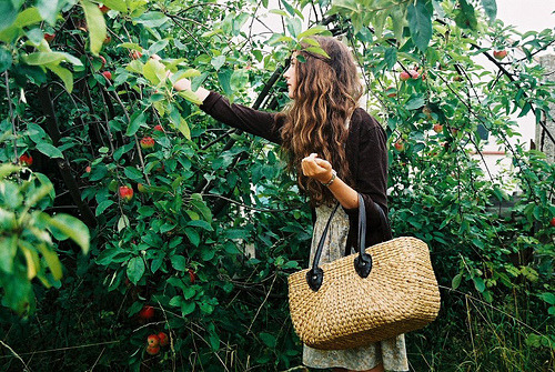copulates:  Apple Picking and Long Grass (by megan-d)