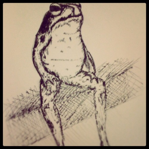 Frog sitting on a bench drawing #YOLO (Taken with instagram)