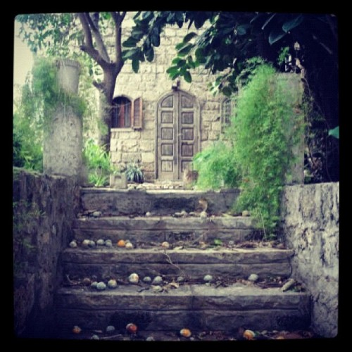 Lebanon 2010 #beautiful #oldhouse #abandoned #instagram  #instagood #photography #artist #art #likeforlike #like4like #ig #10likes (Taken with instagram)