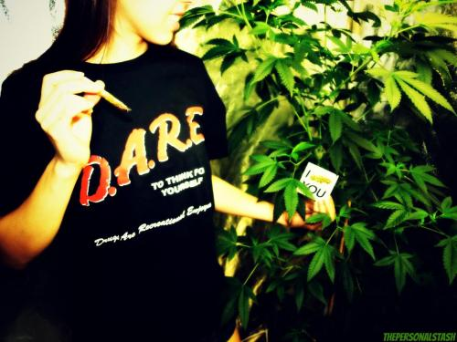 D.A.R.E. (Drugs Are Recreational Enjoyment)www.facebook.com/DARE.America.420