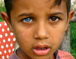 zebakoli:  Wow! The young Indian boys' eyes. O.O