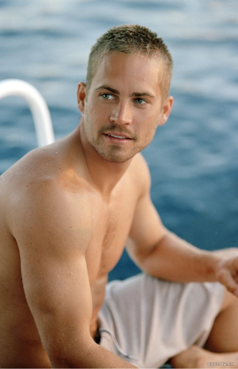 theysexyandweknowit:  Paul Walker