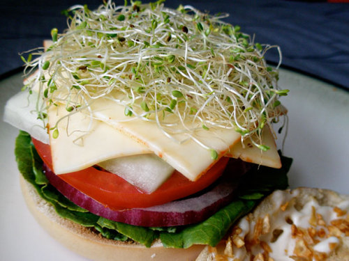 fattributes:  Toasted Garlic Veggie Bagel Sandwich