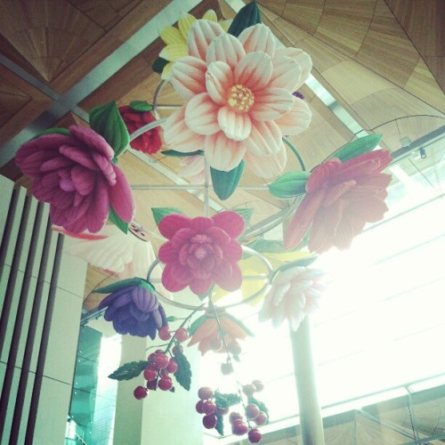 A beautiful installation of inflatable flowers in the auckland art gallery! #art #installation #artgallery #auckland #nz #flowers #flowerporn #bouquet (Taken with Instagram at Auckland Art Gallery)