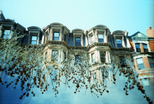 LC-A+, lomo x-pro 100 film. Double exposure of buildings and flora.