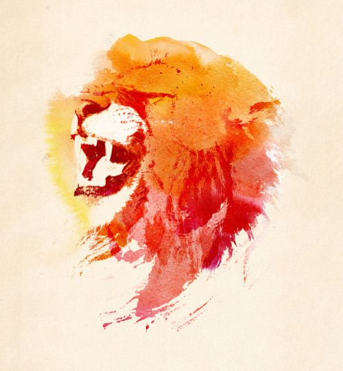 Angry Lion by Robert Farkas