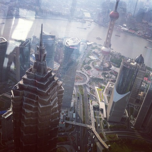 I look down on you, Jinmao Tower! #travel  (Taken with Instagram at 上海环球金融中心 | Shanghai World Financial Center)