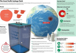 poptech:  areimage:  Great Garbage Patch  Photographer Chris Jordan specializes in large-scale works that depict the magnitude of our consumerism and its impact on our environment. In one of the most emotional presentations at PopTech 2009, Jordan shares heart-wrenching images of birds killed by ingesting plastics that increasingly pollute our oceans.