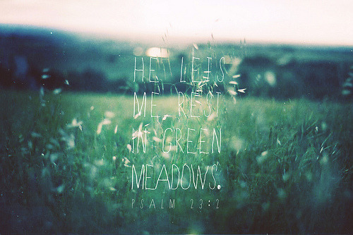 Psalm 23:2 (by Brittney Borowski)