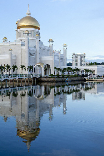 ohmyasian:  (via Around the World in 80 weeks) 2631. Mosque in Bandar Seri Begawan, Brunei. Wow, this mosque looks so luxurious with its pairing of gold and white. Even the trees look perfect!  Well hello, hello ~ Just very surprised to see my Country is featured here in ohmyasian. I am so honour.