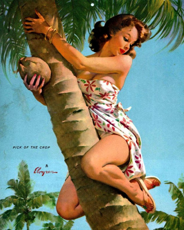 Gil Elvgren, Pick of the Crop (1964). I'm trying manfully to avoid the obvious. Oh, to hell with it: wood, nuts, straddle, penis penis penis