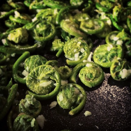 Fiddlehead Picking | Part 2: Sautéed with Butter & Garlic (Taken with instagram)