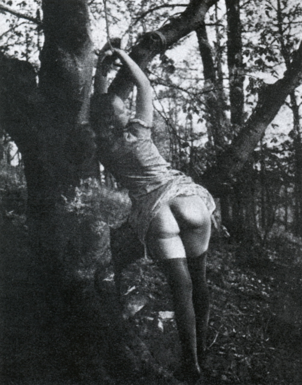 Ah, the spanking tree. Why have all our good, old-fashioned customs fallen by the wayside in this crazy modern world?