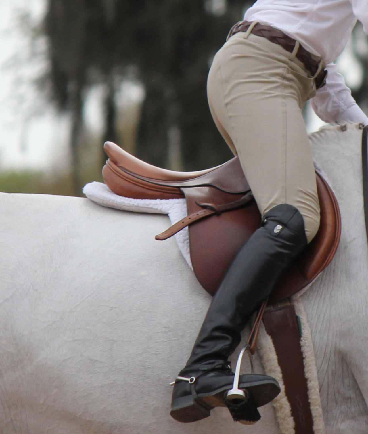 This saddle is amazing!
