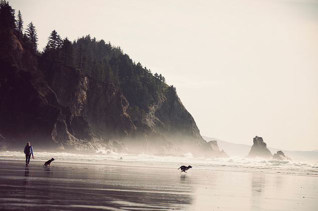 astrangeformoflife:  mpdrolet: Short Sands, Oregon Kennett Mohrman