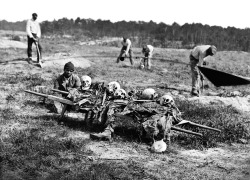 Collecting the remains of soldiers killed in battle during the U.S Civil War (1865).