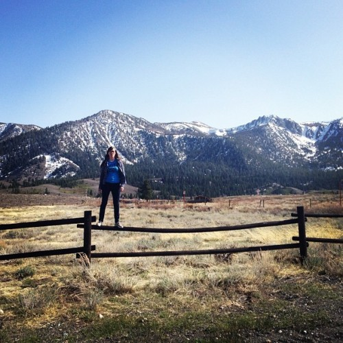 thas me on a fence @ Mammoth (Taken with instagram)