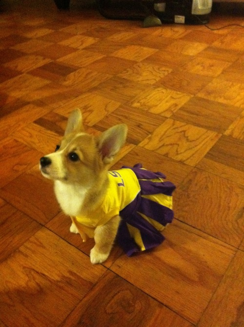 Pippa - future LSU cheerleader