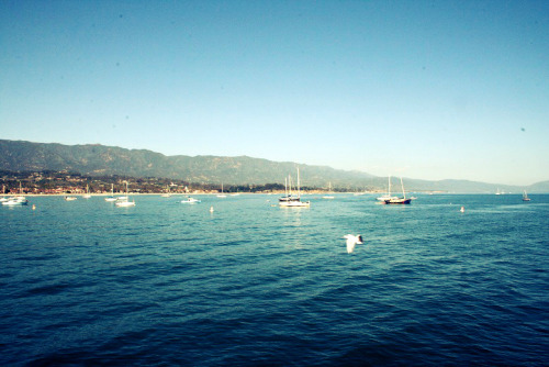 Claire and I took a weekend adventure down to Santa Barbara. It's quite picturesque, if you ask me.