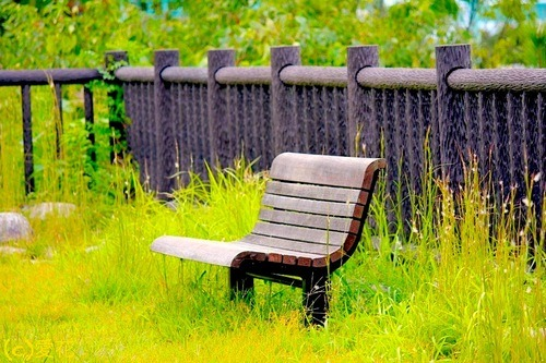 japansnapshot-aikachay:  縁台  えんだい  endai  bench Have A Sit