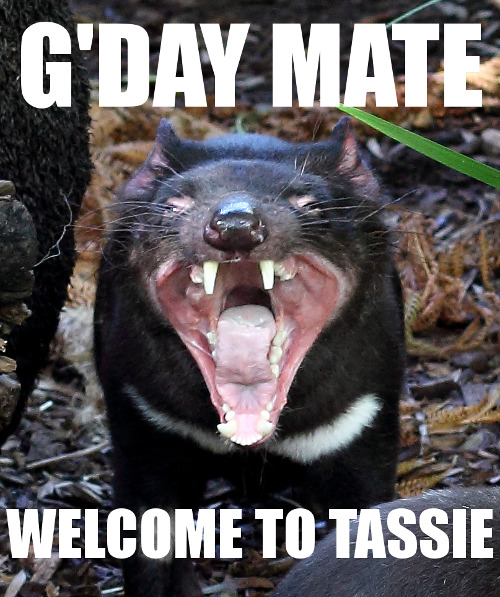 Welcome to Tasmania.
