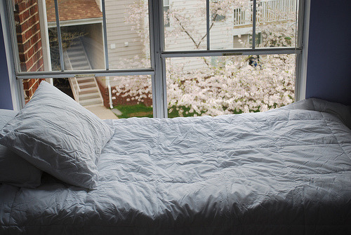 i'm thinking about getting white linen sheets and down comforter :)